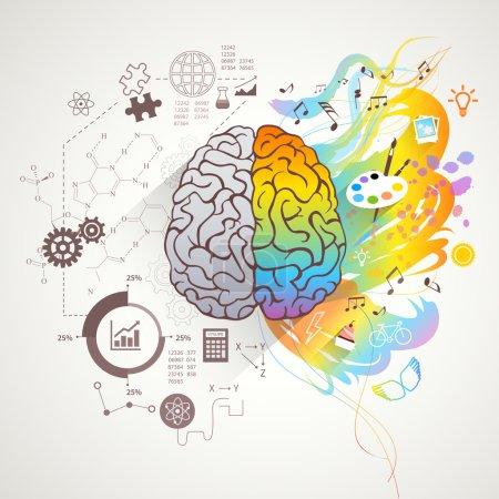 Left Right Brain Concept