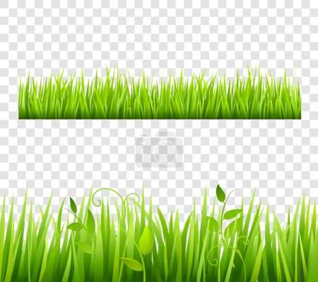 Illustration for Green and bright grass border tileable transparent with plants flat isolated  vector illustration - Royalty Free Image