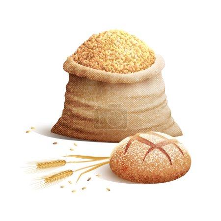 Bread And Grain 3d Concept