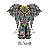 Hand drawn front view elephant with colored ornament vector illustration