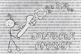 Being a software analyst