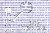 Man inspecting binary code