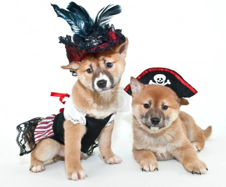 Arrrrrten't We cute?!