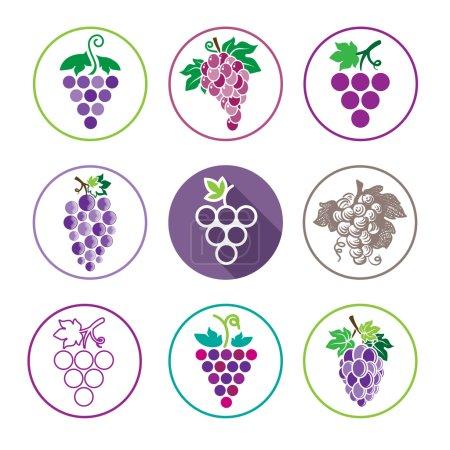 Grapes Icons and Logo Set