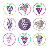 Grapes Icons and Logo Set