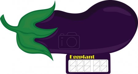Illustration for Guinea squash, beautiful eggplant, beautiful aubergine, beautiful brinjal, helpful usual price tag, enter the price,price of goods, sticker price tag, paper price tag, price tag English, enter the price, illustration pricelist, vector pricelist - Royalty Free Image