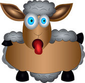 Gray sheep dark sheep big ears cute sheep showing tongue therapeutic wool warm coat dish of sheep beautiful nose showing tongue new year new 2015 year sheep goggle eyed begging eyes twenty twelve  showing tongue bushy tail