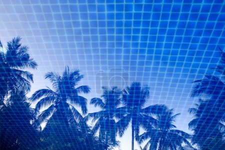 Photo pour Reflection of palm trees in a blue swimming pool - image libre de droit
