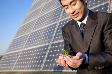 Businessman cupping plant in front of solar panel