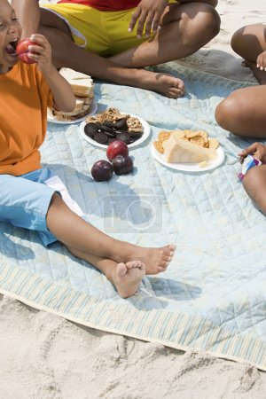 Photo for Family having a picnic - Royalty Free Image