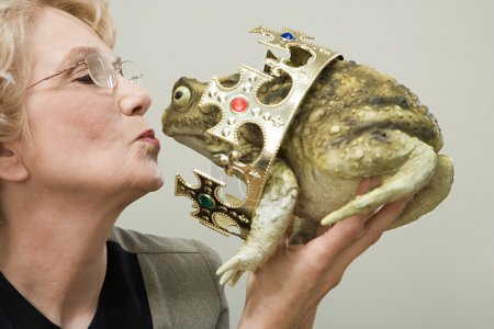 Photo pour Femme embrasser grenouille dans le bureau - image libre de droit