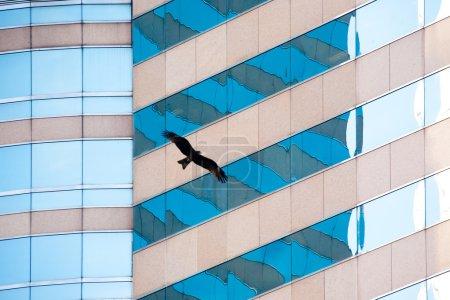Gratte-ciel avec façade miroir