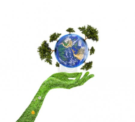 Photo for Hands and Earth, Symbol of environmental protection, Planet With Tree - Royalty Free Image