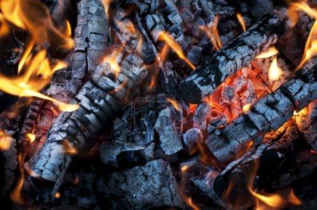 Le feu de la combustion du bois de chauffage avec les cendres et les flammes
