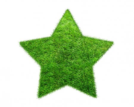 Photo for The Green Grass Star on white background. One pentagonal star on a white background - Royalty Free Image