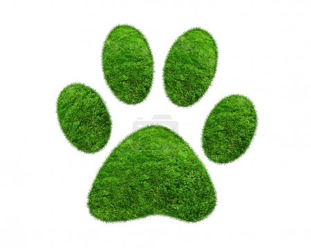 Photo for Grass patches shaped like pet paw prints. Visualization of a footprint from grass, isolated on white. Green grass animal footprint on white background - Royalty Free Image