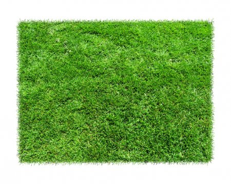 Photo for Empty green grass blank isolated model. Grass is green rectangles on white background. Grass squared area isolated on white background - Royalty Free Image