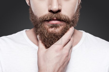 Photo for Touching his perfect beard. Close-up of young bearded man touching his beard while standing against grey background - Royalty Free Image