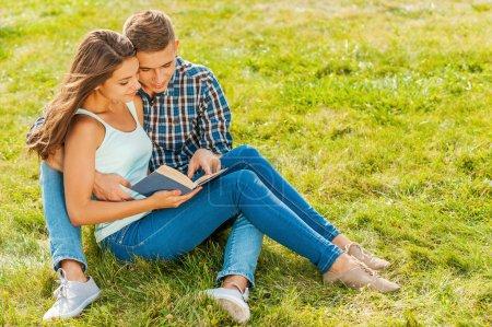 Photo pour Profitant de leur temps libre ensemble. Beau jeune couple amoureux assis sur l'herbe tandis que l'homme pointant livre et sourire - image libre de droit