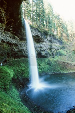 Waterfall in Silver Falls State Park of Oregon