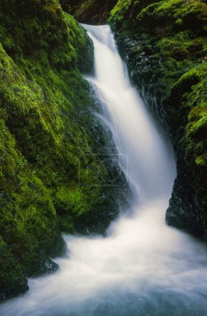 Oregon Waterfall in Pacific Northwest