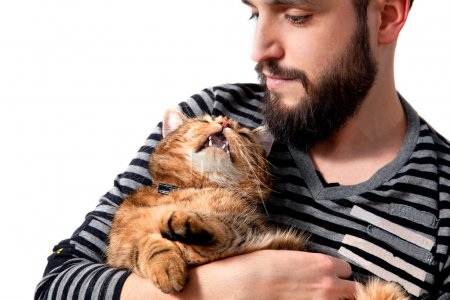 Man hugging his beautiful cat on white background