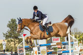 Equestrain Horse Show Jumping
