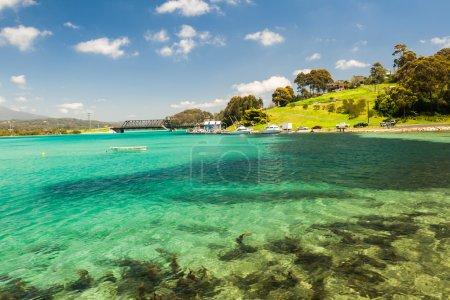 Blue Ocean Beach Seaweed Landscape