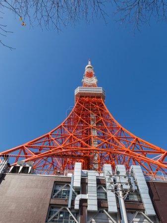 Photo pour Haut rouge tour de Tokyo 332,6 mètres contre un ciel bleu dans le parc de Shiba, Minato, Tokyo, Japon - image libre de droit