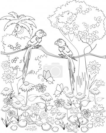 Coloring with parrots on branch