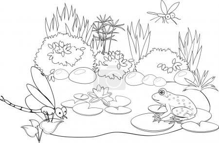 Coloring with  inhabitants of pond