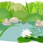 Pond landsaping on white background...