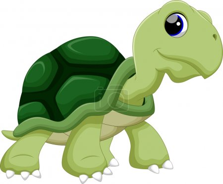 Cute  turtles cartoon