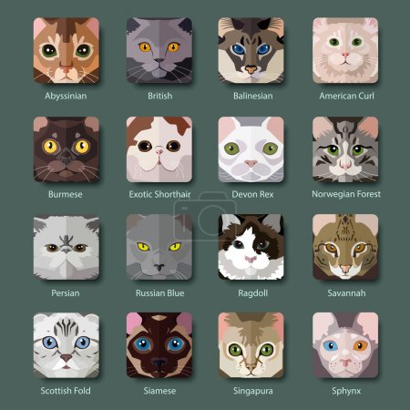 Breeds of Cats icons