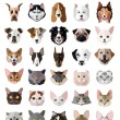 Set of flat popular Breeds of Cats and Dogs icons....