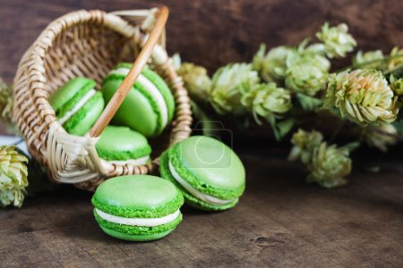 Photo for Green macaroons with hop wlowers on dark wooden background. Vintage dark scene - Royalty Free Image