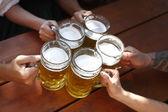 Lidé pít pivo tradiční bavorské pivní zahrádce