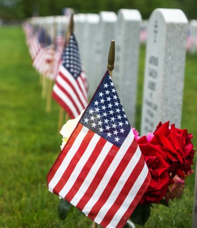 Flags at a National Cemetery