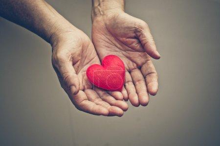 Photo pour Mains de la femme âgée tenant coeur rouge - image libre de droit