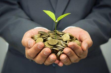 Photo pour Arbres poussant sur pièces, rsc, développement durable, croissance économique, arbres poussant sur pile de pièces - image libre de droit
