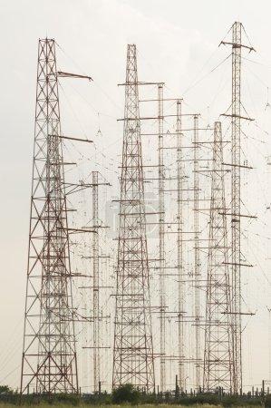 Antennas forest