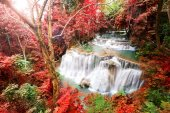 Deep forest waterfall in autumn scene at Huay Mae Kamin waterfal