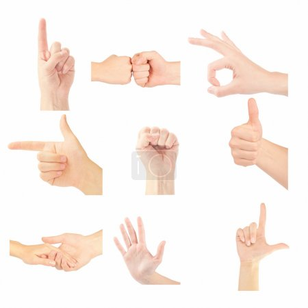 Set of gesturing hands isolated