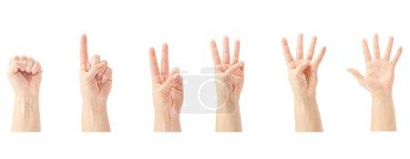 Photo pour Compter les mains de l'homme (0 à 5) isolées sur fond blanc - image libre de droit