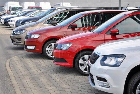 Brand new Skoda cars in