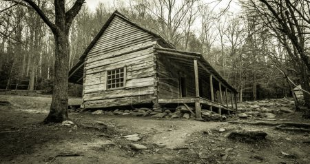 Smoky Mountain Cabin In Black And White