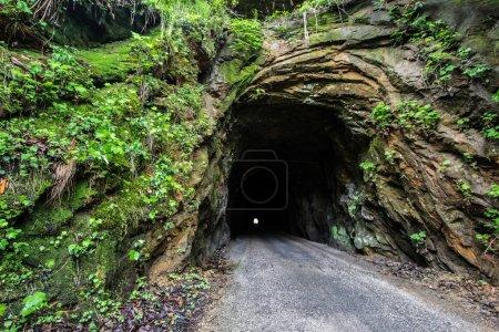 The Haunted Nada Tunnel