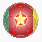 Fotbalový míč mapování s příznakem