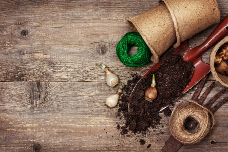 garden tools, peat pots, ground ,   plant the bulbs for planting