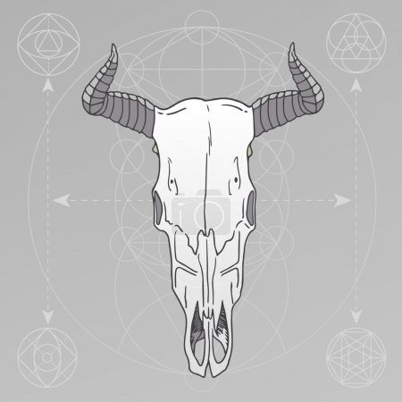 Animal skull sacred geometry
